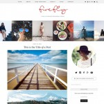 wordpress_theme_firefly-540x540